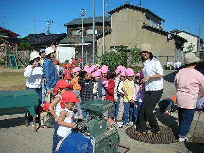 幼稚園の脱穀